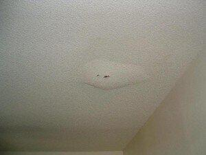 Example of A Roof Leak