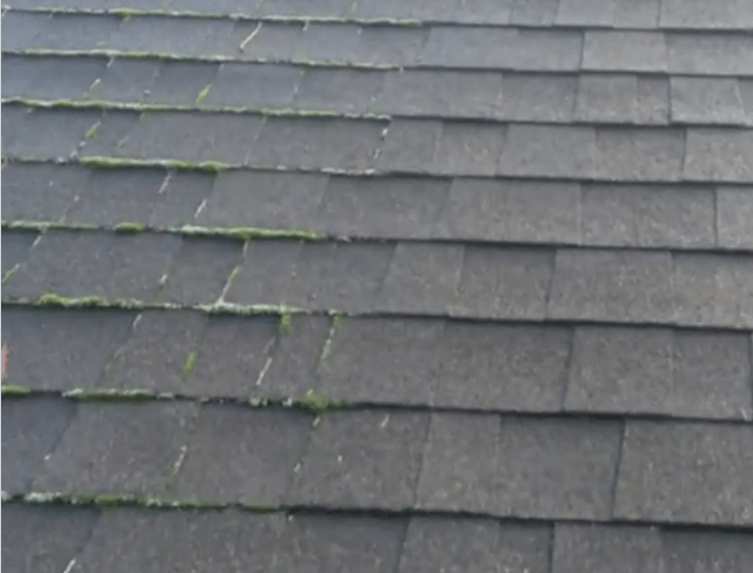 treated vs untreated moss on roof